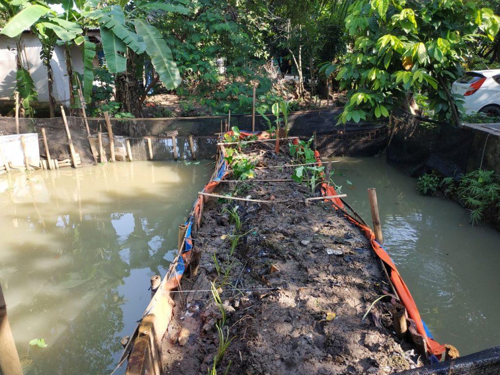 Budidaya Ikan Nila Di Kolam Terpal Bulat Infoakuakultur Com